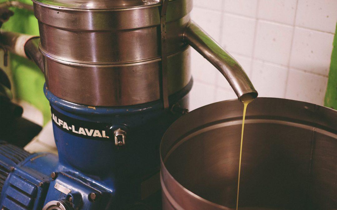 La filtrazione dell'olio di oliva