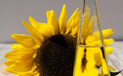 Olio d'oliva e oli di semi, quali sono le differenze?